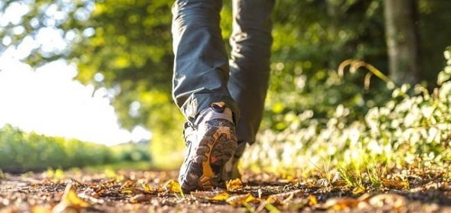 با پیادهروی، ۱۶۷ کالری در ساعت خواهید سوزاند